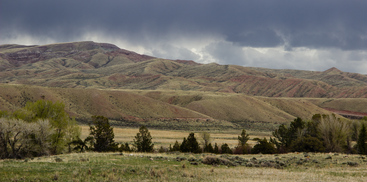 Field work near Dubois (Wyoming)
