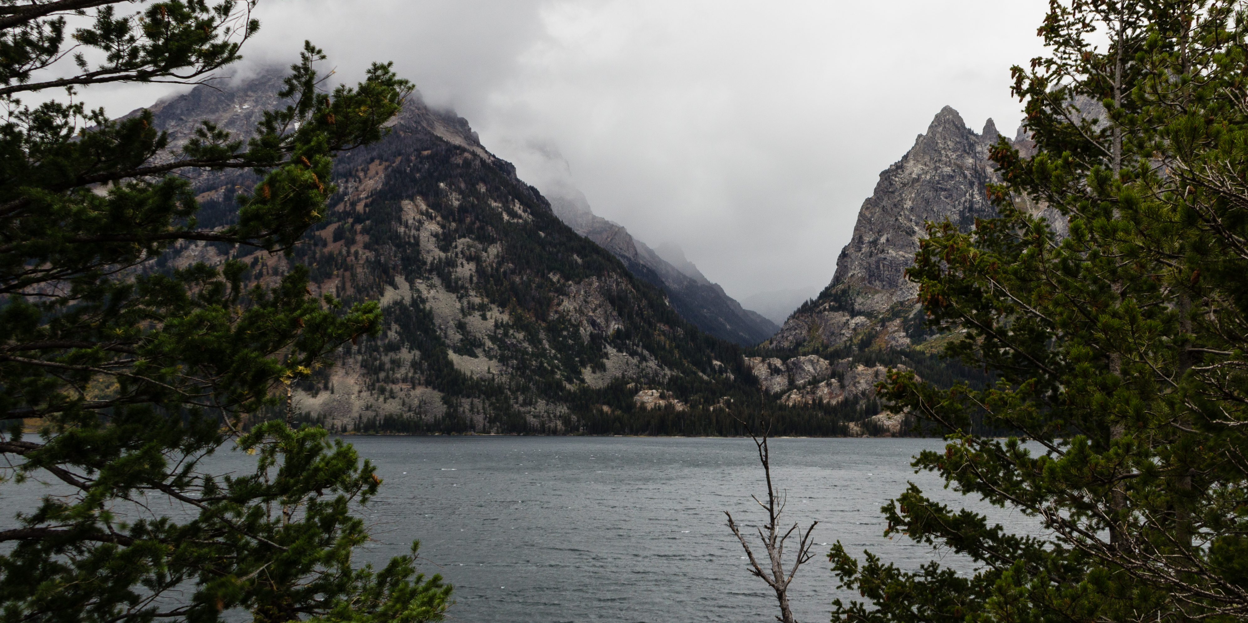 The storm is coming at Jenny Lake